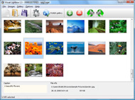 how to open pop up Image Gallery Javascript Supported Internet Explorer